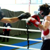 Boxing research. Source: SABEL Labs (http://bit.ly/sabellabs)